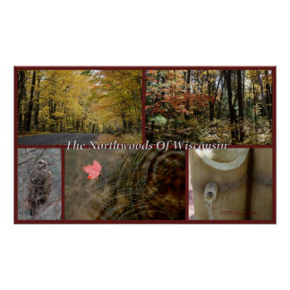 Nature Collage Print Northwoods Wisconsin Seasonal
