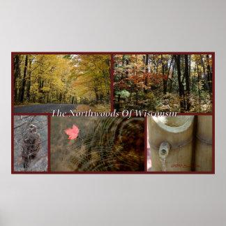 Nature Collage Print Northwoods Wisconsin Seasonal