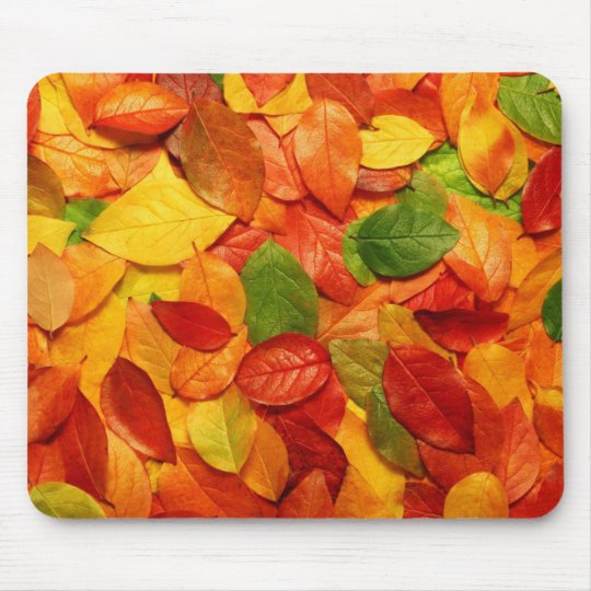 nature colourful leaves mouse pad