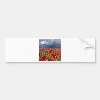 Nature Field Poppy Memories Bumper Sticker