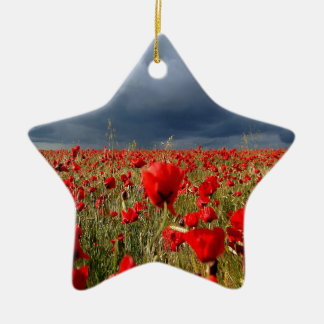 Nature Field Poppy Memories Christmas Ornament