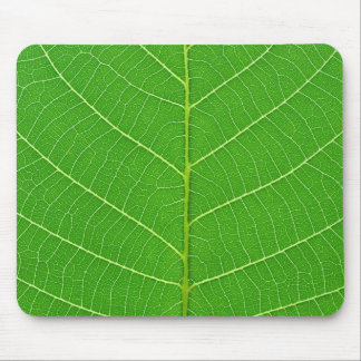 nature green tree leaf texture mouse mat