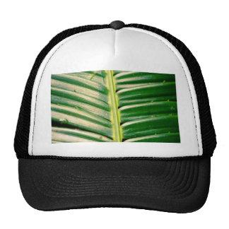 Nature Hats