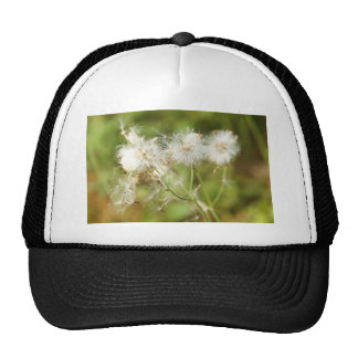 Nature Mesh Hat
