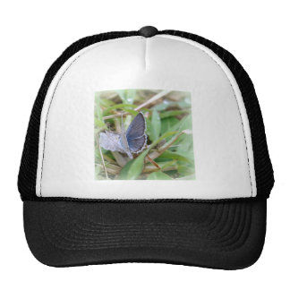Nature Hats