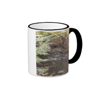 Nature in New England Mug