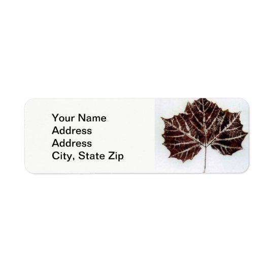 Nature Leaf Print,  big sycamore leaf in brown.