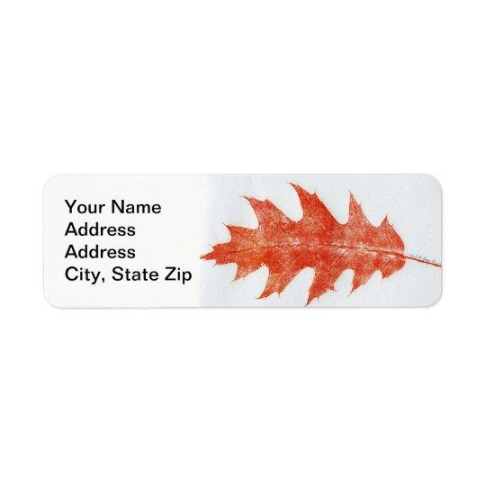 Nature Leaf Print, red oak autumn leaf in red.