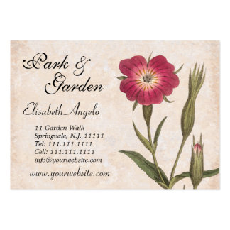 Nature Lover's Collage Wildflowers and Insects Business Cards