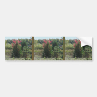 Nature Loves Flowers Trees Green fall Season color Bumper Sticker
