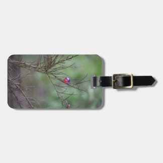 Nature of Paintball Luggage Tag