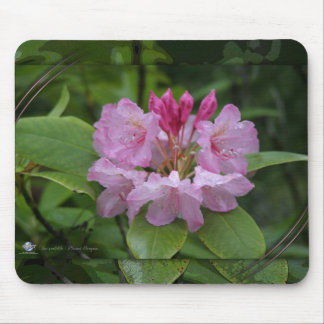 NATURE OREGON MOUSE MAT