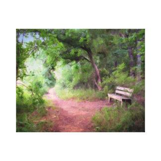 Nature Park Path Stretched Canvas Print