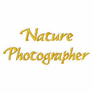 Nature Photographer Embroidered T Shirt