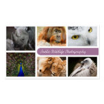 Nature Photographer Outdoors Wildlife Photography Pack Of Standard Business Cards