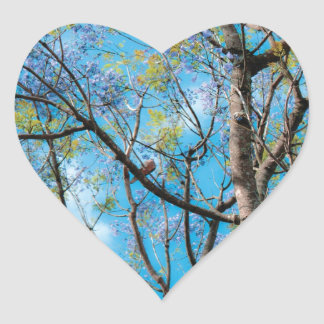 Nature Photography Blue Sky Bird on Tree Branch Heart Sticker