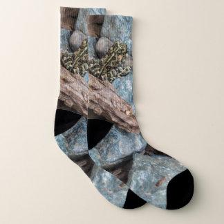 Nature Photography Frog Socks
