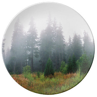 Nature pine wood morning photo Decorative Plate