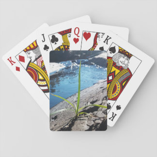 Nature Playing Cards