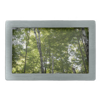 Nature Rectangular Belt Buckles