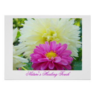 Nature s Healing Touch art print Pink White Dahlia