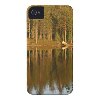 Nature's Reflections custom Blackberry Bold case