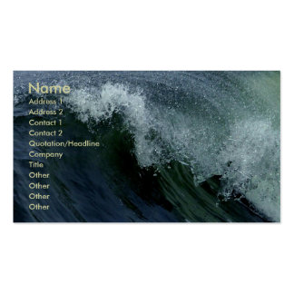 Nature s Wave Business Card