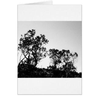 Nature Shots Card