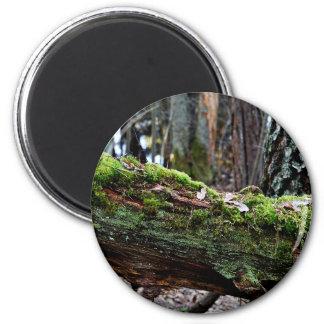 Nature Subject 6 Cm Round Magnet