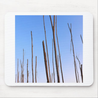 Nature Trees Lost Bark Mouse Pads