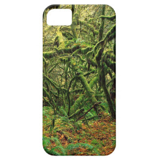 Nature Trees Mossy Times iPhone 5 Cases