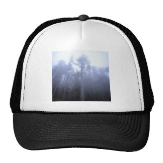 Nature Trees Winter Fog Cap