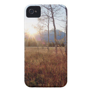 Nature Trees Winter Sun Forest iPhone 4 Case-Mate Cases