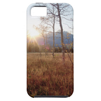 Nature Trees Winter Sun Forest iPhone 5 Cover