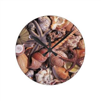 Nature Water Assorted Shells Beach Round Clock