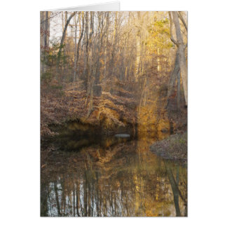 Nature Water Stream Thank You Card