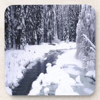 Nature Winter Snowy River Coaster