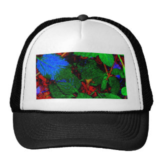 NATURE'S ABSTRACTS MESH HATS