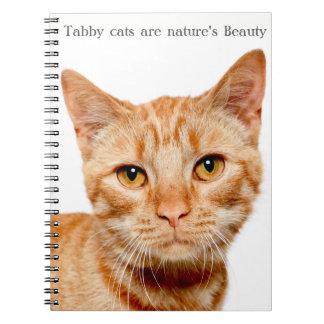 Nature's Beauty: Zia Notebook