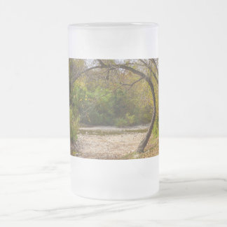 Natures Circle Frosted Glass Beer Mug