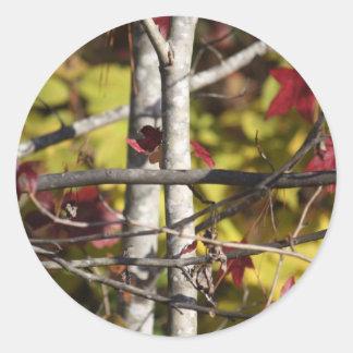 Nature's cross stamps round sticker