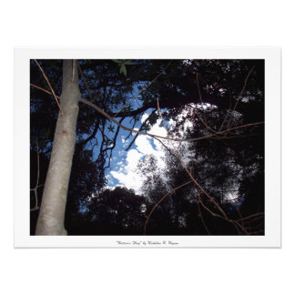 """Nature's Flag"" Professional Photo Art"