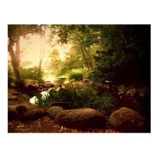 Natures Hideaway Postcard