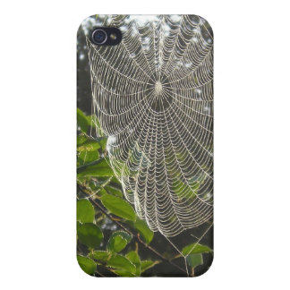 natures lace spider web cases for iPhone 4