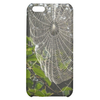 natures lace spider web case for iPhone 5C
