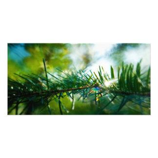 Nature's Magic Personalized Photo Card