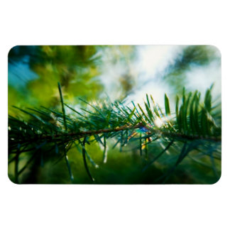 Nature's Magic Rectangular Photo Magnet
