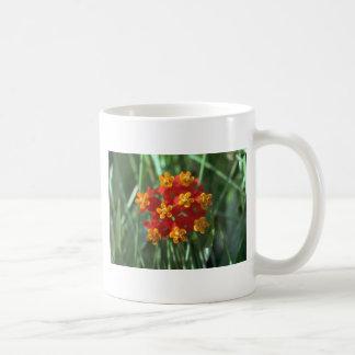 Nature'S Pie Coffee Mugs