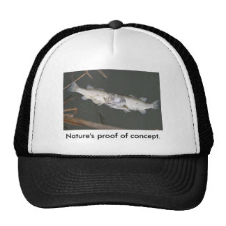 Nature's proof of concept. cap