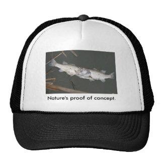 Nature's proof of concept. cap